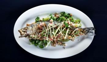 סדנת אוכל תאילנדי